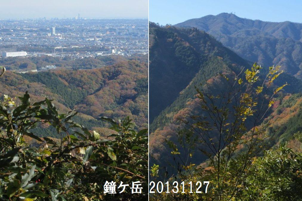【丹沢周辺 軽ハイキング 個人ガイド】 登山ガイドと少人数で、近郊の登山へ