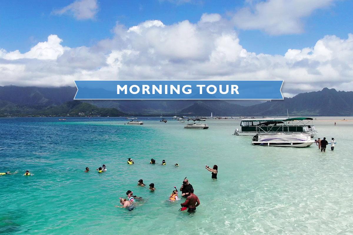 ★Kaneohe Sandbar Turtle Watching & Snorkeling Tour [AM]