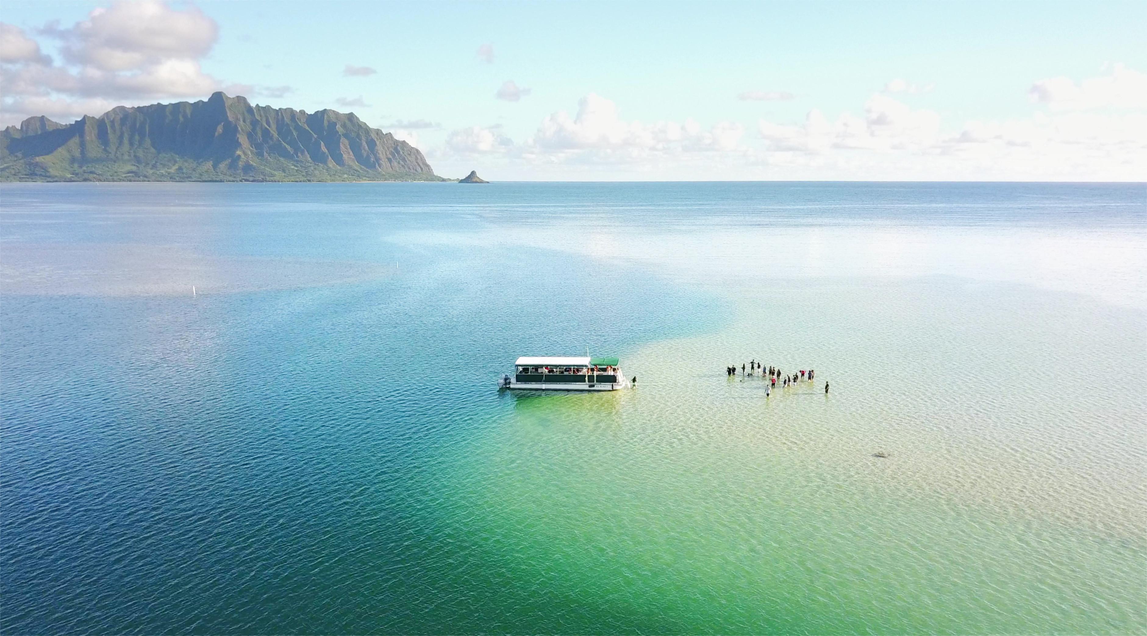 Kaneohe Sandbar Turtle Watching & Snorkeling Tour [PM]